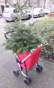 Dineke en de We Go met kerstboom