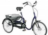 Driewieler met lage instap Rider van Roam