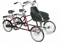 Duofiets Twinbike plus van Roam