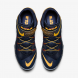 Schoenen Nike lebron 8 flyease