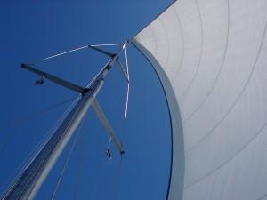 Windscherm
